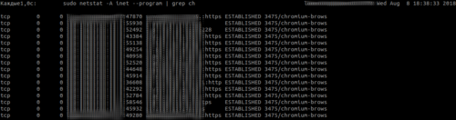 Кратко: watch в Linux